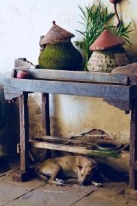 Burmese Pots Bagan Myanmar