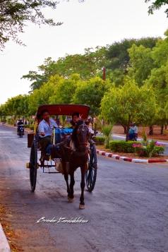 Horse Carriage Bagan Myanmar